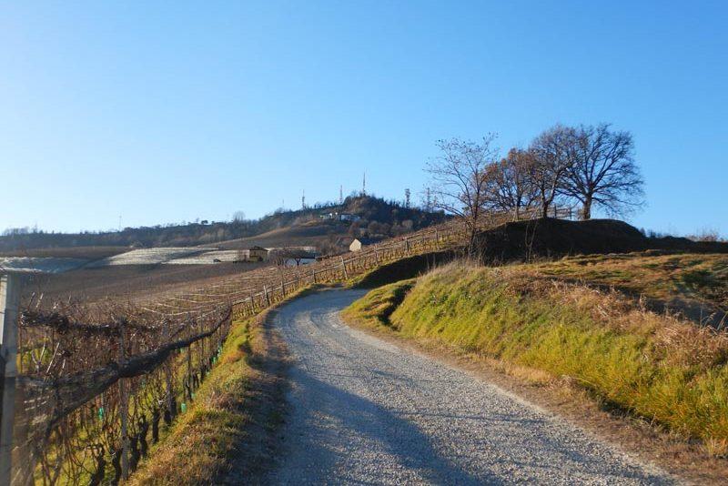 esperienze-passeggiate-sentieri-langhe